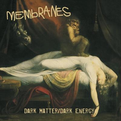 The-Membranes-Dark-Matter-Dark-Energy-cover