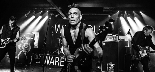 THE-MEMBRANES